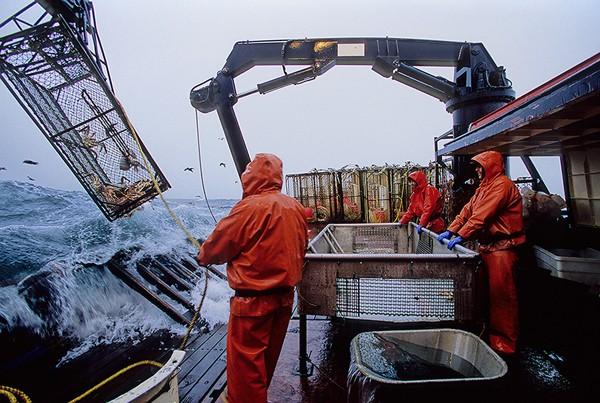 crabbing gulf of alaska crab fishing bering sea
