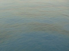Bonga oil leak: oil sheen shown on surface of sea. Photo: Shell