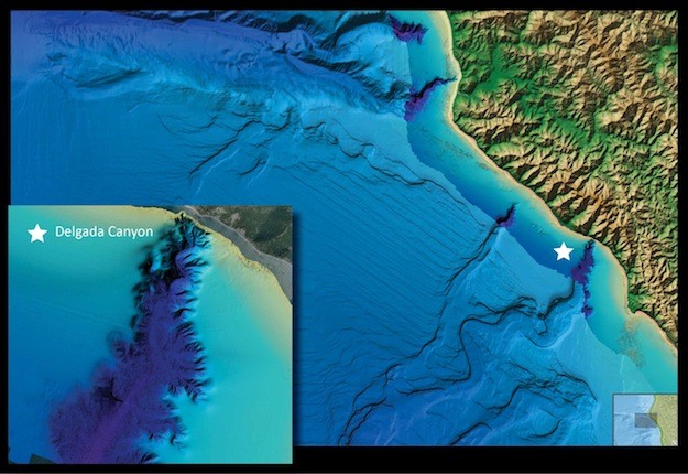 A view of Delgada Canyon offshore Northern California, as portrayed in NOAAs new online viewer. Image: NOAA