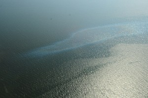 An oil sheen observed following an oil spill at Chevron Frade Field offshore Brazil in November.