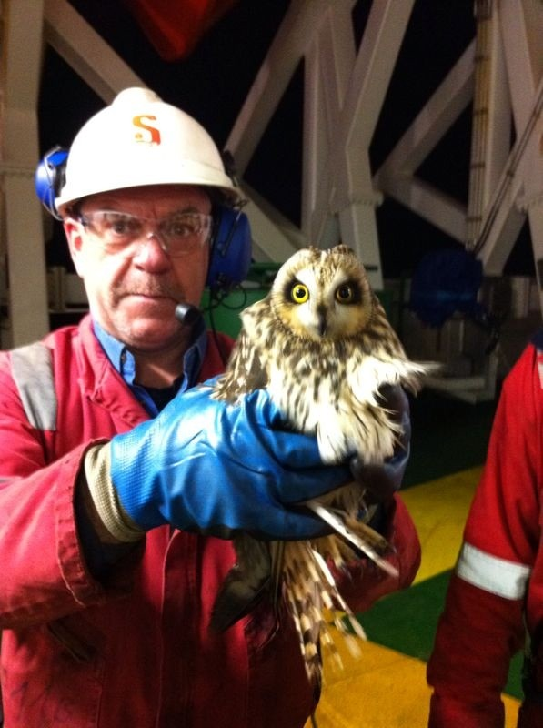 owl driller stena carron