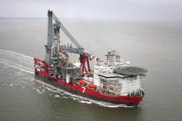 The Seven Borealis 