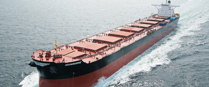 bulk carrier capesize