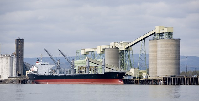 grain ship bulk carrier export dry cargo