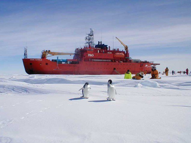 Researchers from Aurora Australis observing a pair of penguins